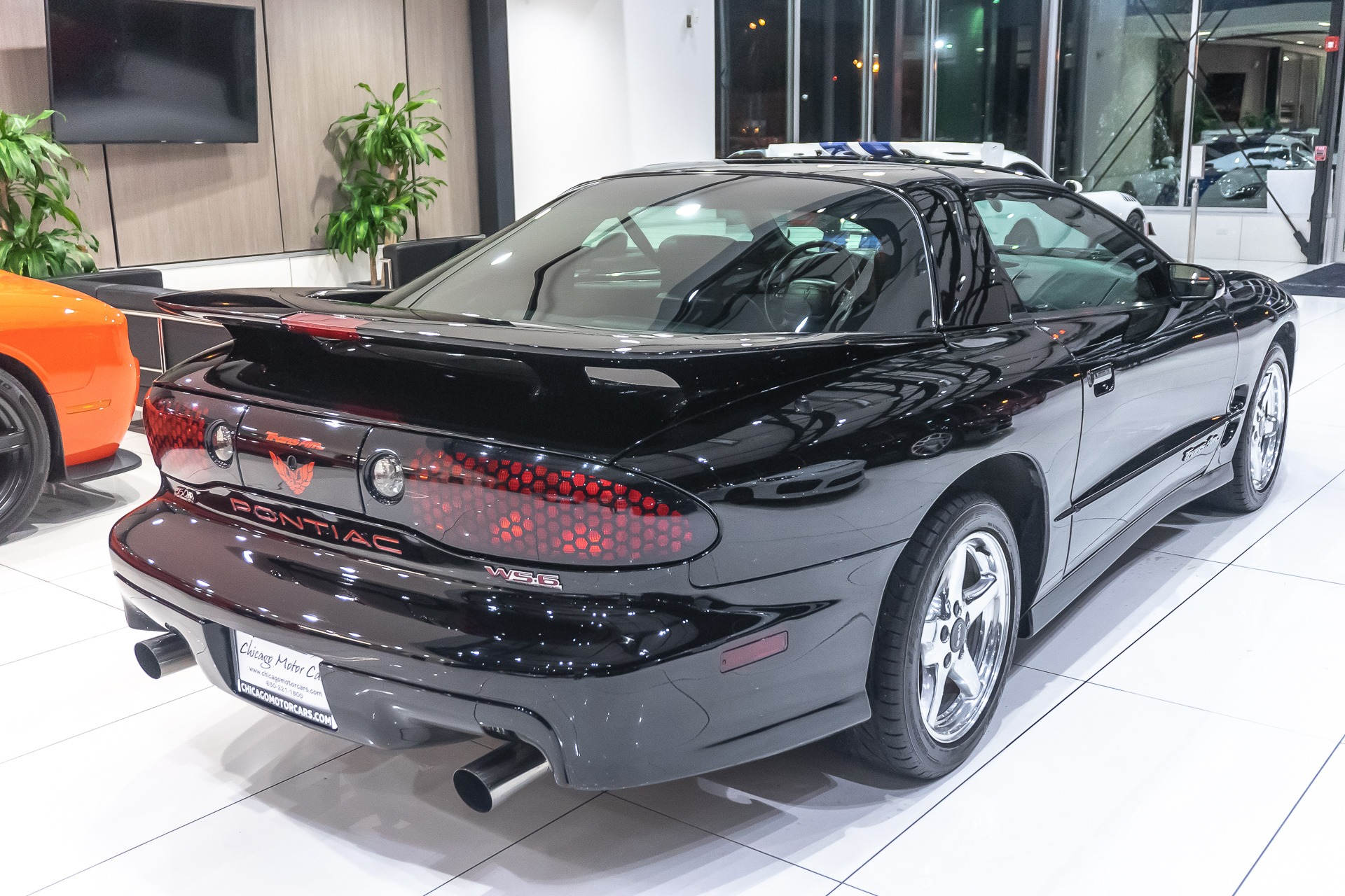 Used-2001-Pontiac-Firebird-Trans-Am-WS6-T-Top-Coupe-6-Speed-SLP-Performance-Pkg